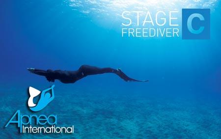 Apnea Australia – Australia's Leading Freediving School